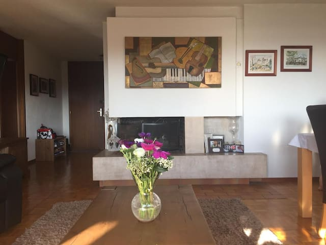 Beautiful 3 bedroom apartment in Lutry - Lutry - Daire