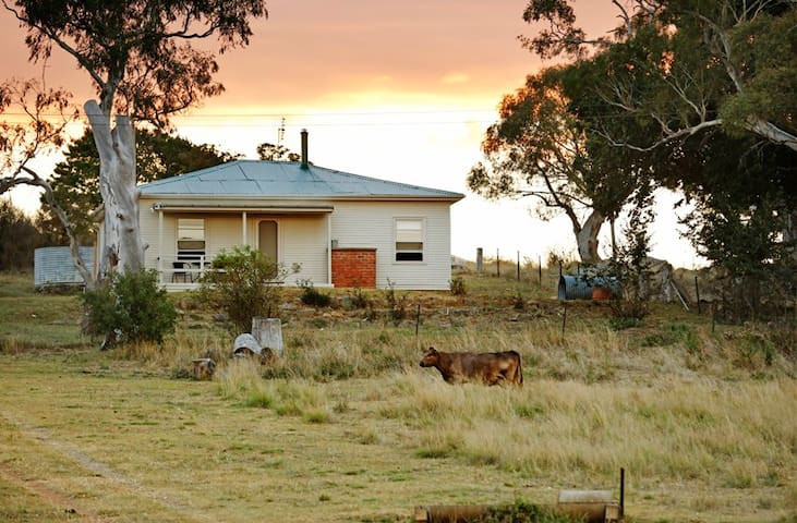 - Hillside Cottage - Amazing Views - Maffra