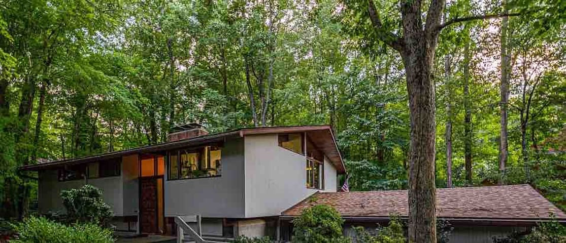 Unique Mid-Century Home in a Serene Forest Setting