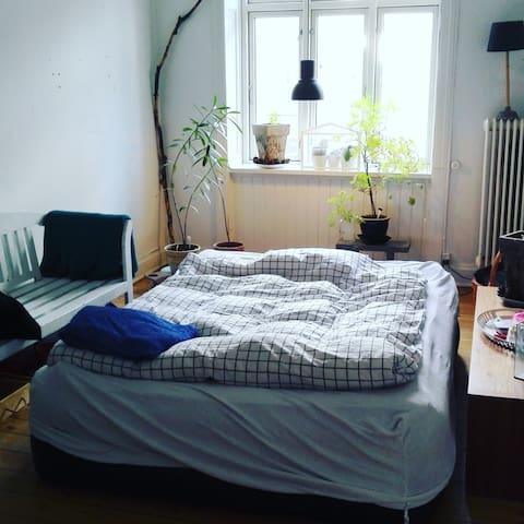 Lovely and bright room in central Nørrebro