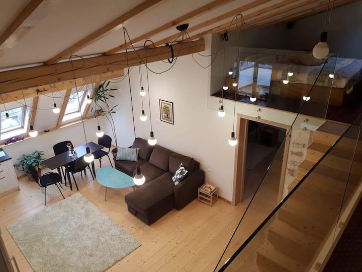 Leisure Apartments Brasov
