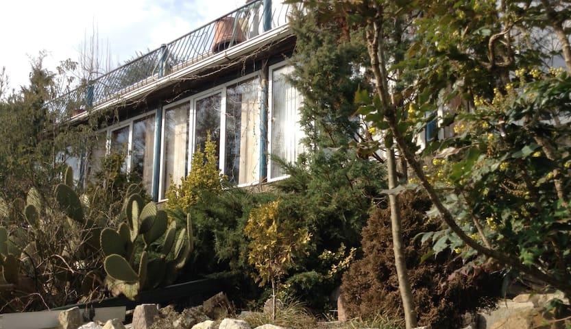 Тропический сад - Lazarevskiy - Вилла