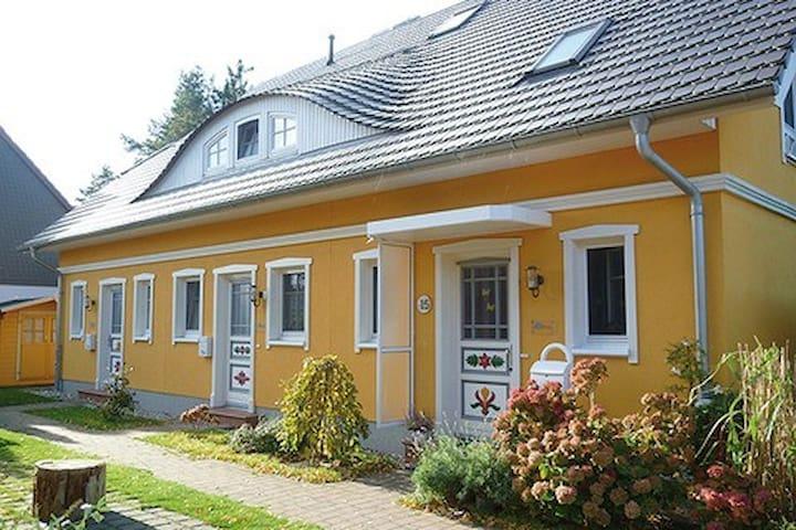 herzmuschel houses for rent in zingst mecklenburg vorpommern germany. Black Bedroom Furniture Sets. Home Design Ideas