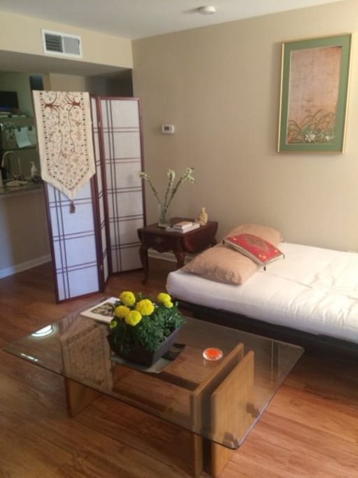 Beautifully Decorated Apartment Apartments For Rent In