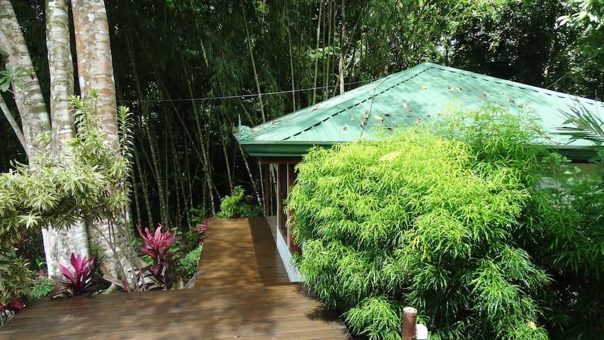 Casitas Plumeria #1 - Puntarenas - Bungalow