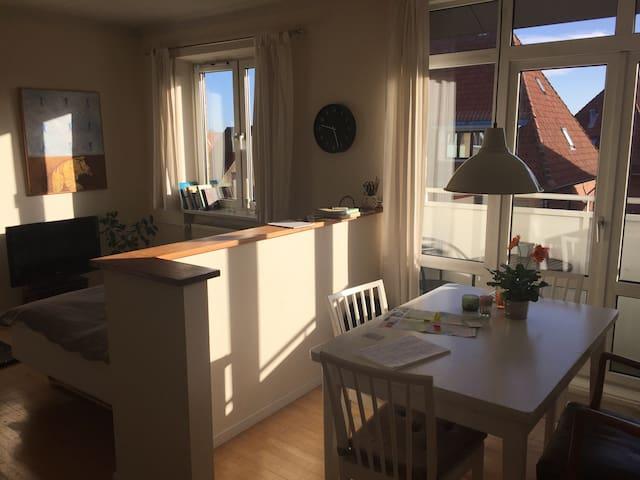Stor, lys 1-vær. lejlighed m. altan - Odense - Lägenhet