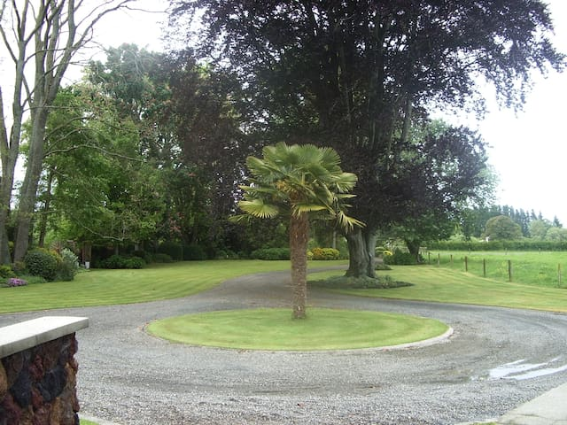 Mohaonui's front lawn and gardens. Driveway and entrance to property