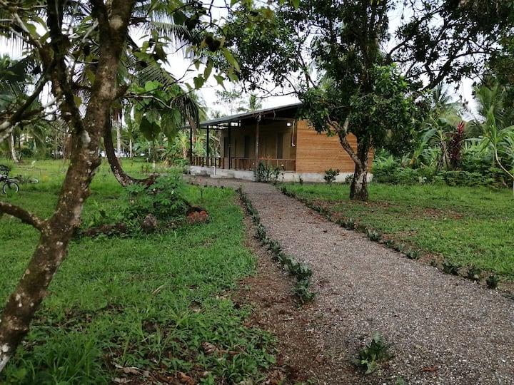 Pacífico Colombiano un paraíso de selva y mar