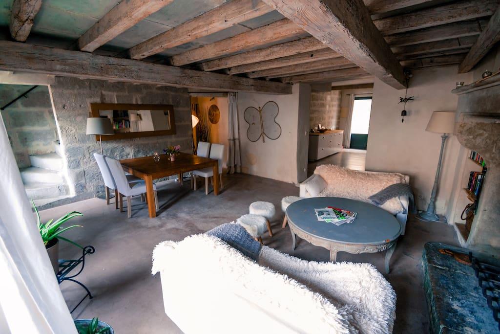 Grand espace à vivre ouvert sur cuisine et terrasse/jardin