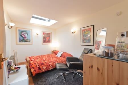 Cosy & Private Studio for 2 in leafy Dublin 4 - Dublin