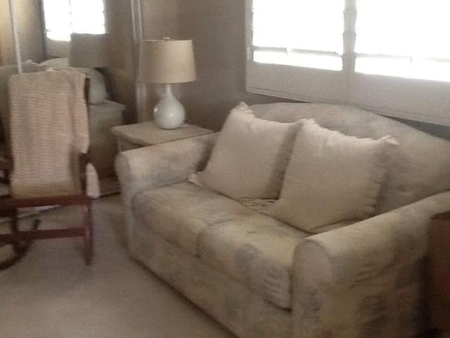 sitting area off master suite  sofa bed
