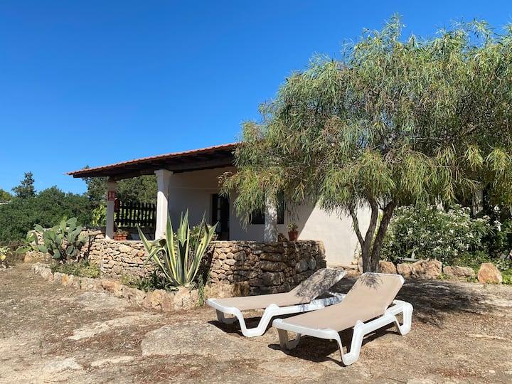 Es Pujols-Can Mussenya 2-Formentera