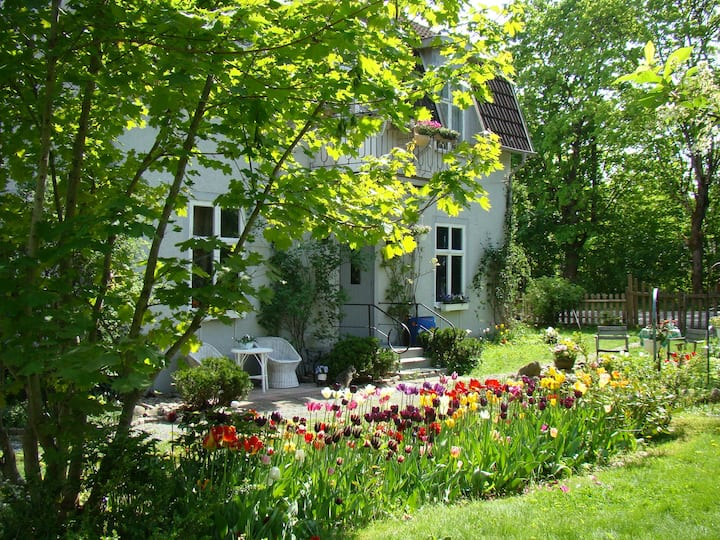Wonderful house in lovely location