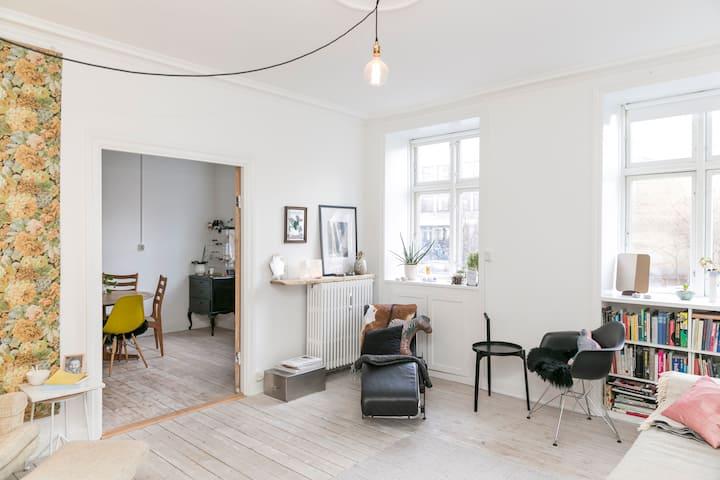 Light spacious modern home