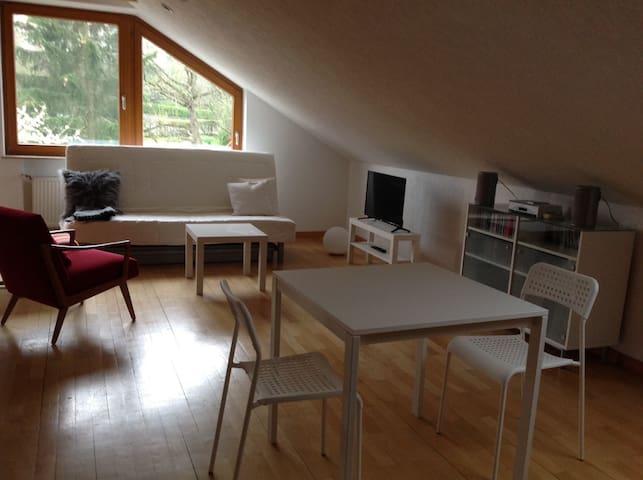 1 Zi-Appartement mit Balkon Nähe Messe/Flughafen