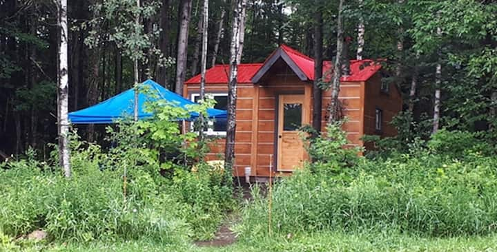 Off-grid Hand-crafted Cabin