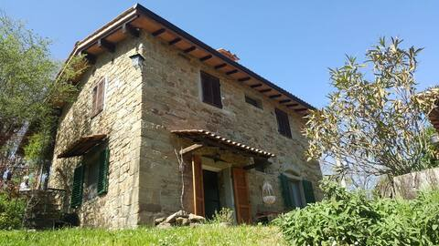 Sustainable House A - Via dei Ciliegi