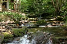 325 feet of cascading creek frontage