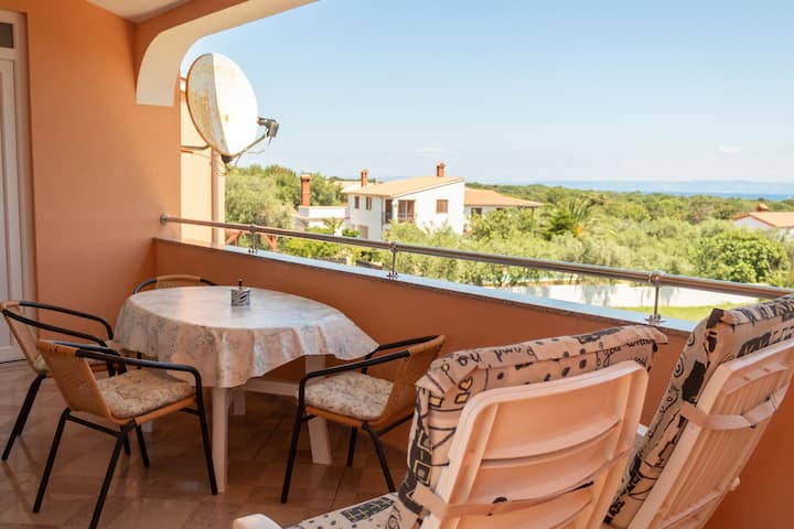 Apartment Dragica with Sea View