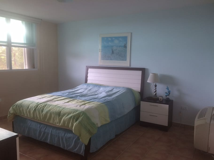 Master Bedroom with private bathroom and spacious walking closet. With A/C unit.