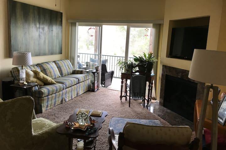 Living Room - Upper Level
