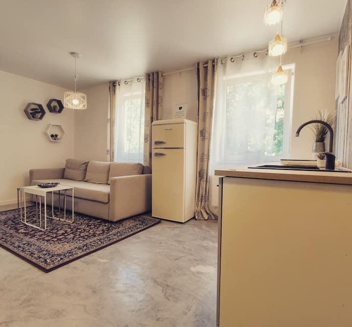Newly renovated Rumpiškės Apartment