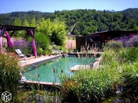 Chalet avec piscine naturelle
