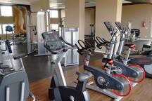 modern and wide Gymnasium