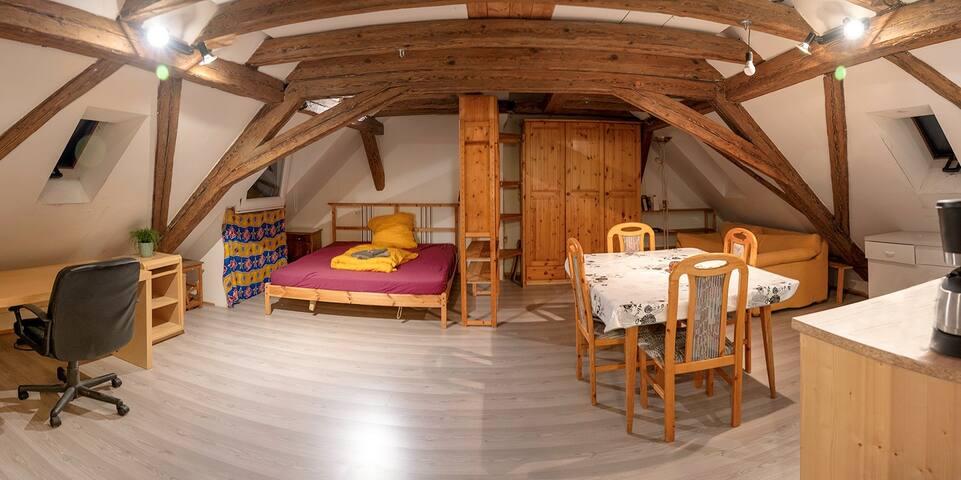 Stimmungsvolles großes Dachzimmer in der Altstadt