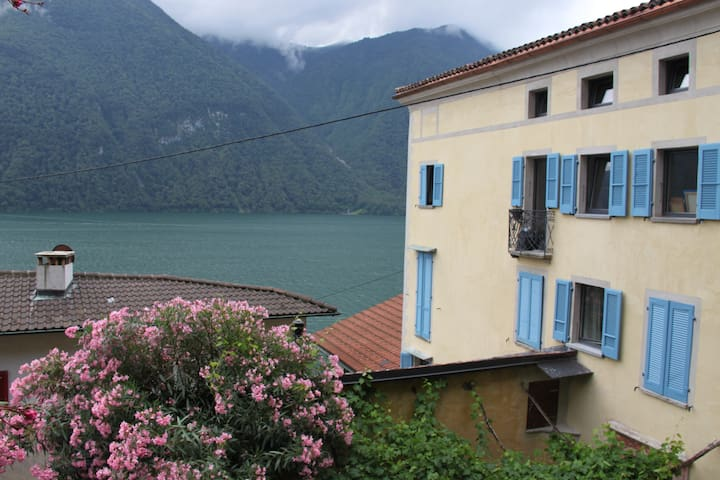 Large Apartment in historical house with lakeviews - Lugano - Apartment