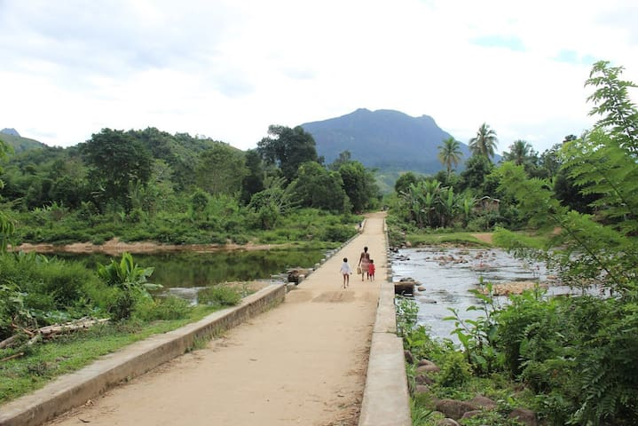 Marojejy NP and Village Experience in Manantenina