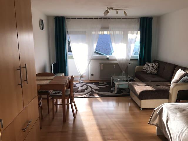 Helle 1-Zimmer-Wohnung in ES-Zollberg