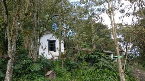 Casa Tradicional Campesina