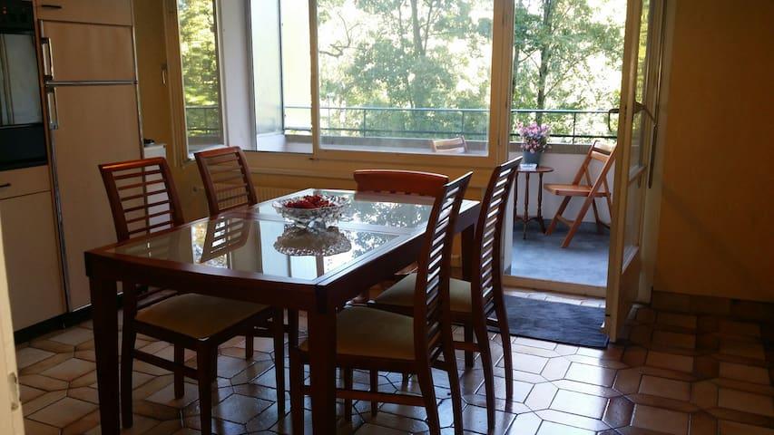élégant appartement près du lac. - Genève - Lejlighed