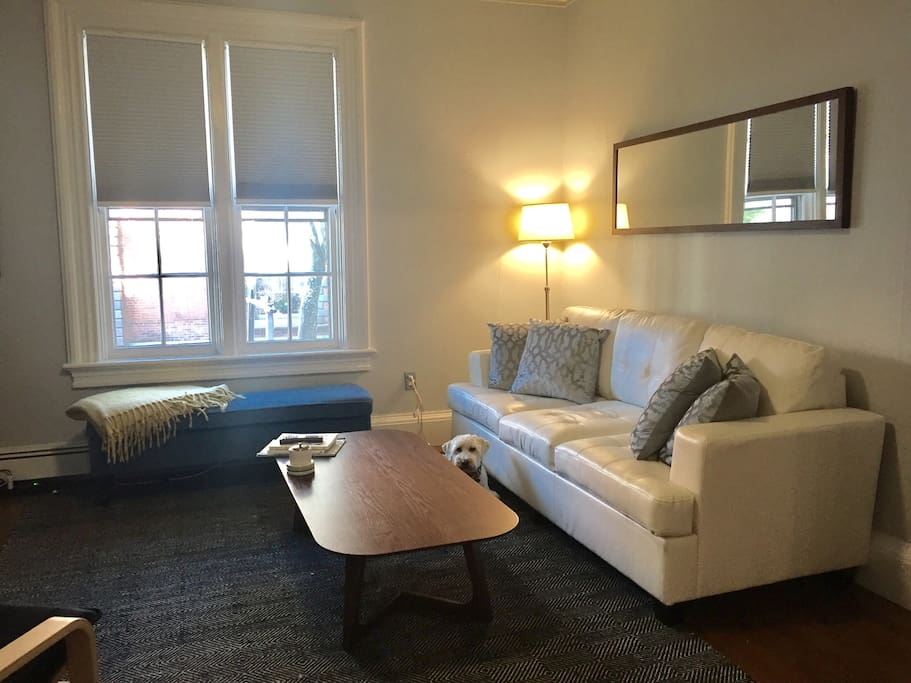 Comfortable living room/dining room with a view of historic Benefit Street.  Your dog will make the window bench his favorite spot!  The couch is a queen sized sleeper with a brand new high end mattress.  Extra linens are provided for guests using the sleeper.