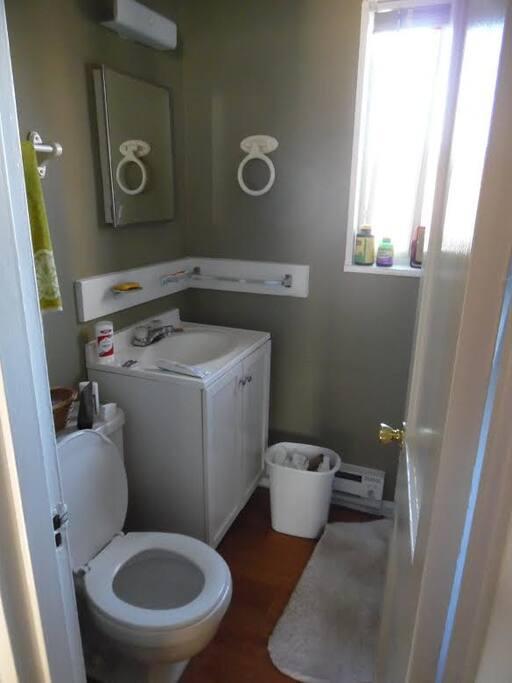 Shower, toilet, vanity.