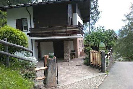 Villa Carmela - Val di Fiemme Dolomites