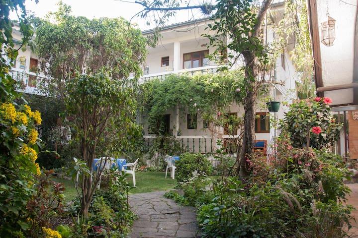 Apartamentos Otorongo river view 2B #16