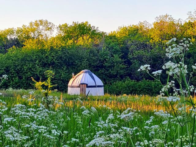 Glamping yurt near Gudhjem and round church