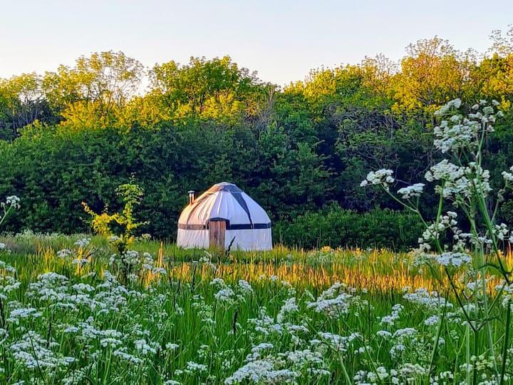 Glamping yurt near Gudhjem and round church