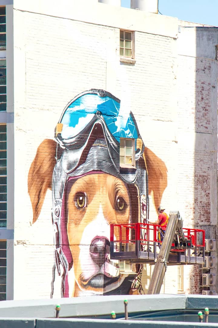The new graffiti piece up in Harrington.