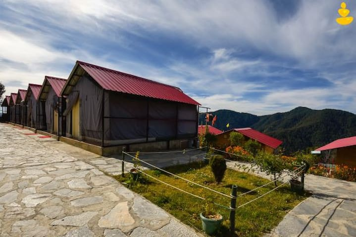 LivingStone   Luxury Tents   Group Offer   Chail  