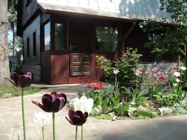 Гостевой дом Леопольд - gorod Khimki - Hus