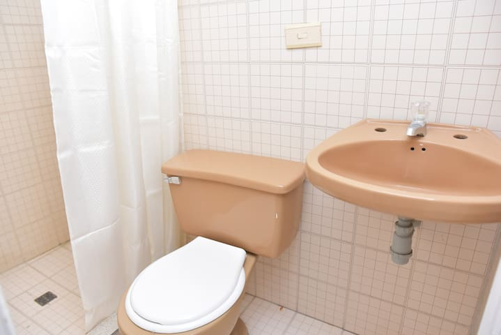 private bathroom with electric shower for hot water, towels, toilet paper and soap for 2 people