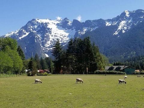 A Shepherd's Retreat: Stunning Mountain View