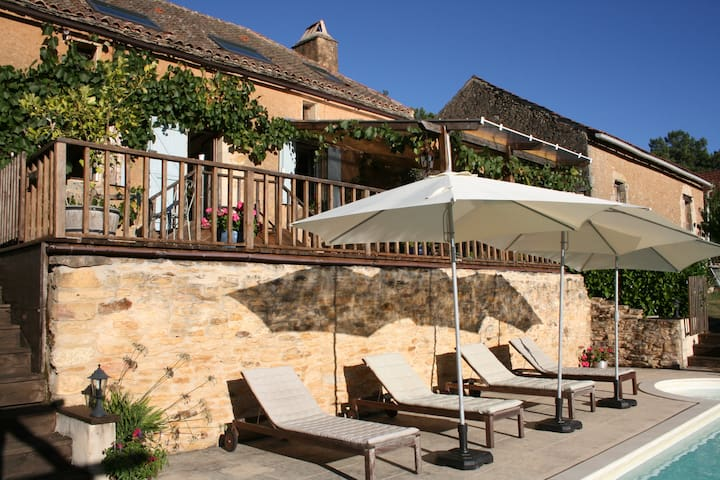 Stunning luxury farmhouse with private pool - Besse