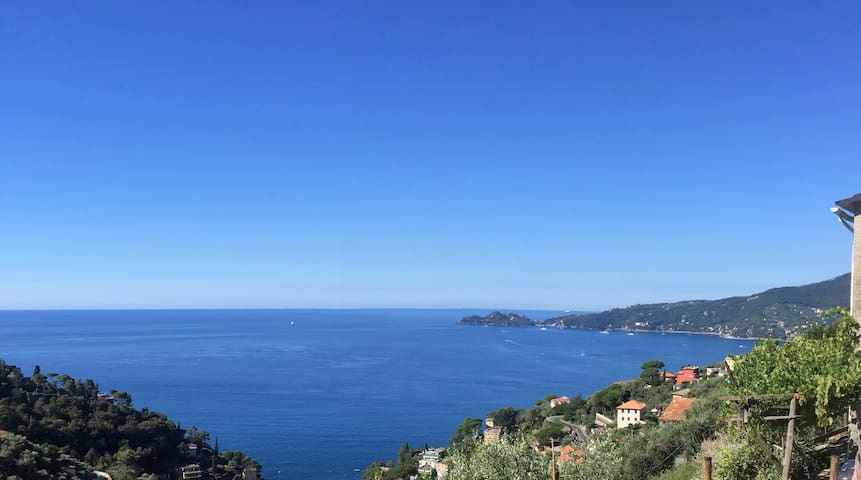 COUNTRY and SEA ...Golfo del Tigullio e  Portofino - Rapallo - Apartment
