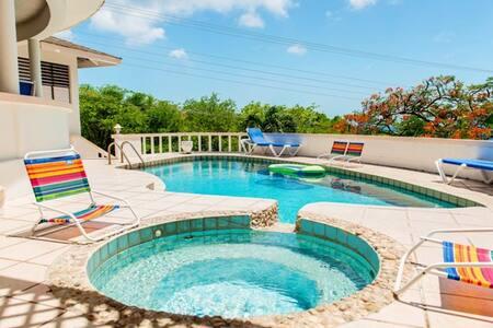 Amazing Villa Tropicasa