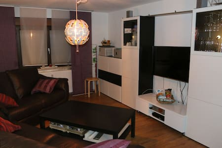 Wohnzimmer mit bequemen Schlafsofa - Sandhausen