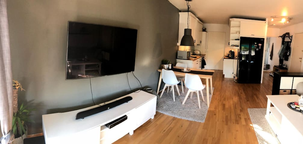 Flott leilighet sentralt i Oslo
